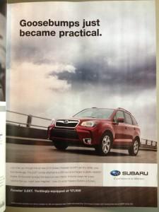 Subaru's Goosebumps